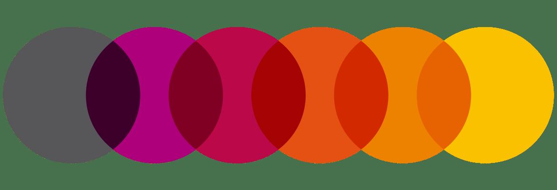 General Optica - Rebranding  a more current look - SUMMA   summa 07977e7181